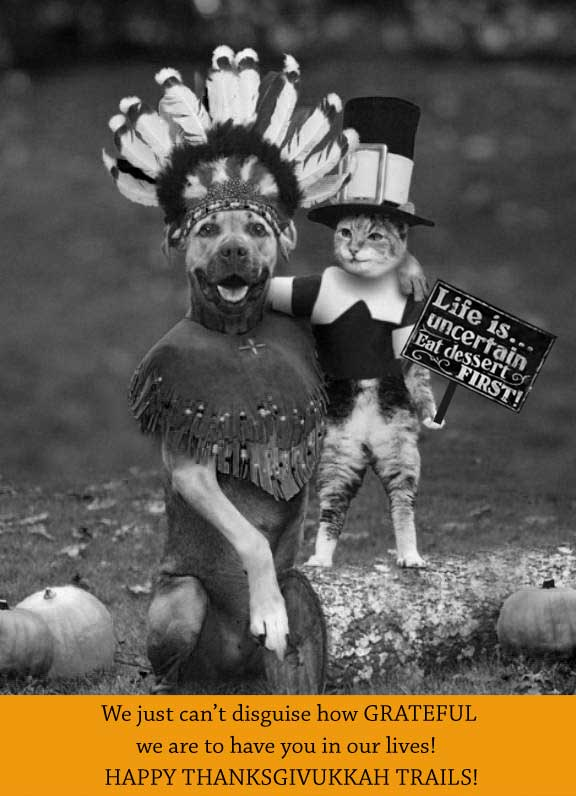 dog thanksgiving card