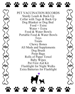Dog travel checklist