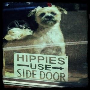 Hippies Use Side Door