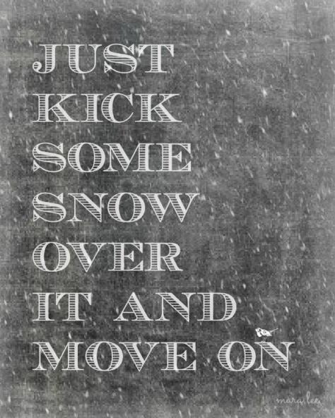 Winter Dog Wisdom