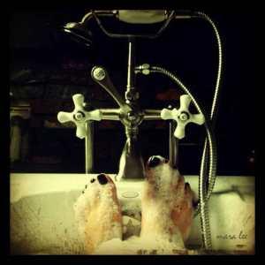 tub-feet
