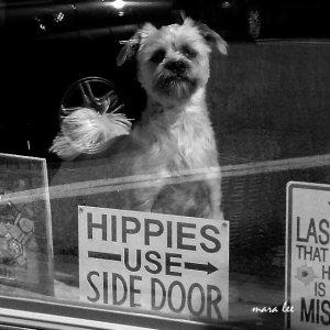hippie sign