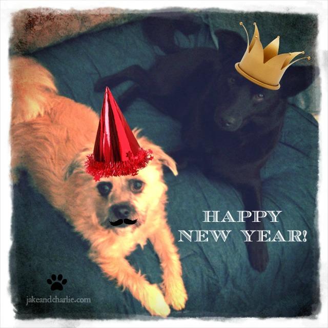 jakeandcharlie-new-year