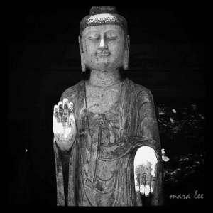 buddha-serenity-2