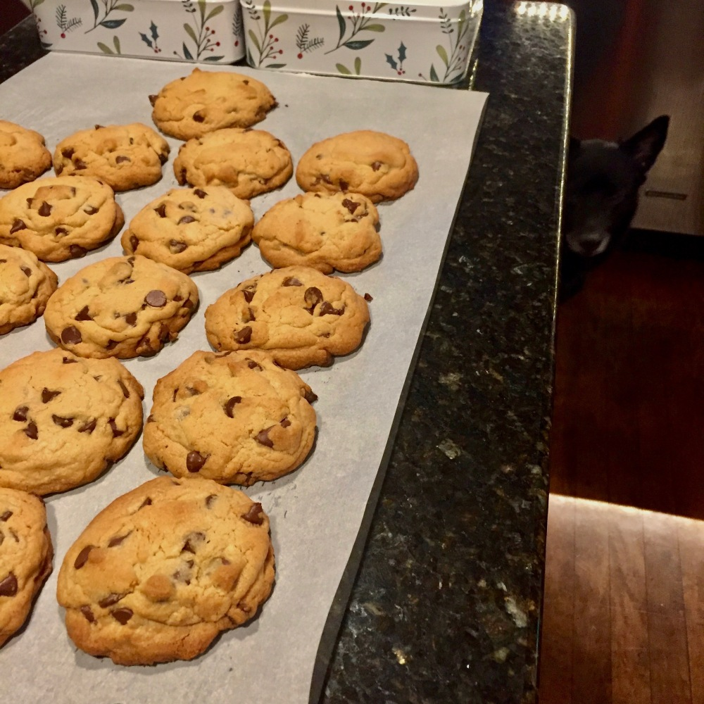 chocolate-chip-cookies-jake